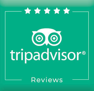 Buy Trip Advisor Reviews